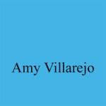 blue villajero
