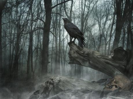 the-dark-crow